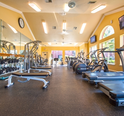Fitness Center at Camden Holly Springs Apartments in Houston, Texas